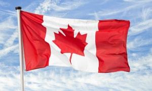 Loạn thông tin Tư vấn Du học Canada trên Mạng xã hội