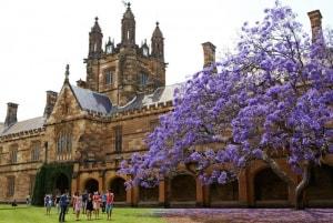 2 trường Đại học tại Úc lọt top những trường đại học hàng đầu về tỷ lệ sinh viên có việc làm sau tốt nghiệp