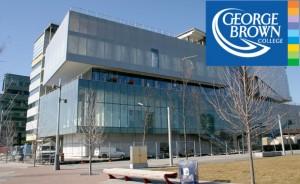 Thực tập hưởng lương & xin Visa ưu tiên tại Cao đẳng George Brown